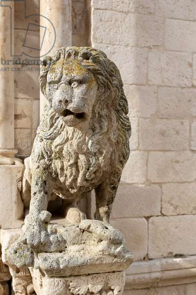 Altamura, Bari, Apulia, Italy, The Cathedral of Santa Maria Assunta, exterior, portal carved by Mastro Antonio da Andria in 1533