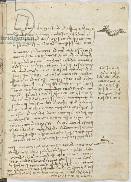 Birds Flight Code, c. 1505-06, paper manuscript, cc. 18, sheet 13 recto