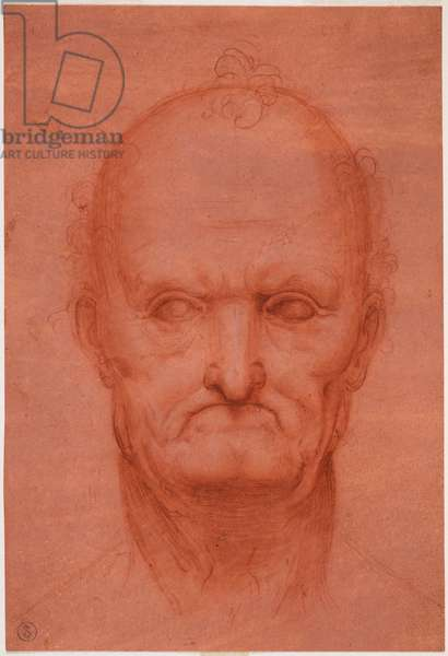 Head of old man, c. 1515 (blood on prepared red paper)