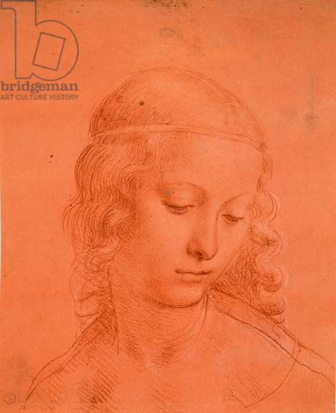 Maiden's head, c. 1508-10 (blood with touches of white lacquer on prepared red paper)