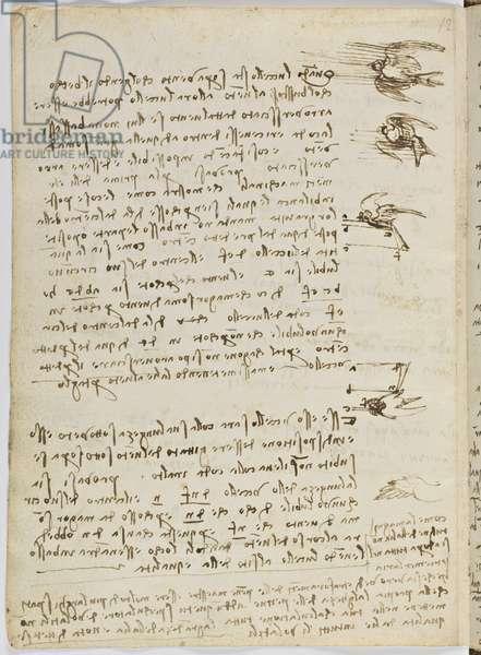 Birds Flight Code, c. 1505-06, paper manuscript, cc. 18, sheet 8 verso