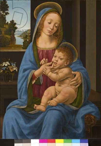Madonna and Child, 1485-90 (Tempera on Panel)
