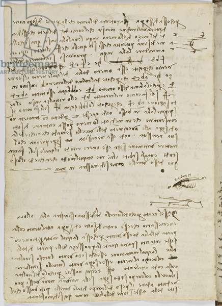 Birds Flight Code, c. 1505-06, paper manuscript, cc. 18, sheet 9 verso