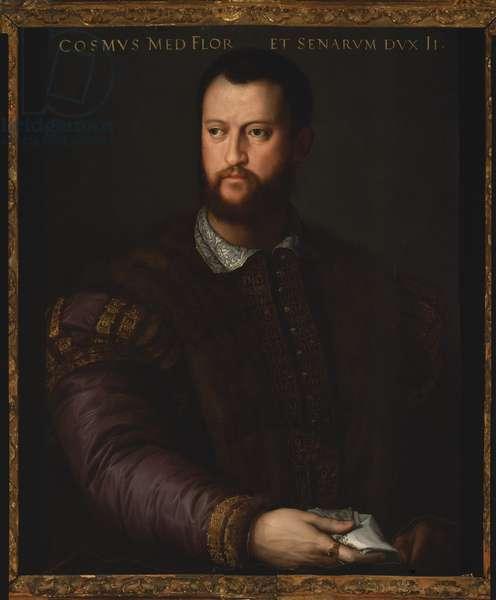 Portrait of Cosimo I de Medici, 1566 (oil on panel)