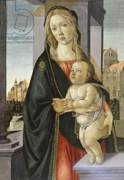Madonna and Child, 1485-95 (tempera on Panel)
