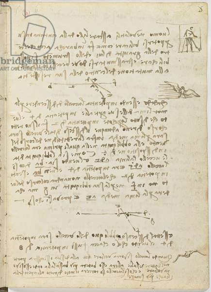 Birds Flight Code, c. 1505-06, paper manuscript, cc. 18, sheet 5 recto