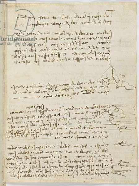 Birds Flight Code, c. 1505-06, paper manuscript, cc. 18, sheet 10 recto