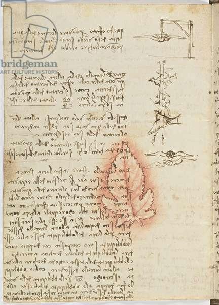 Birds Flight Code, c. 1505-06, paper manuscript, cc. 18, sheet 15 verso