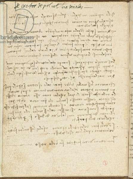 Bird Flight Code, c. 1505-06, paper manuscript, cc. 18, Cover II