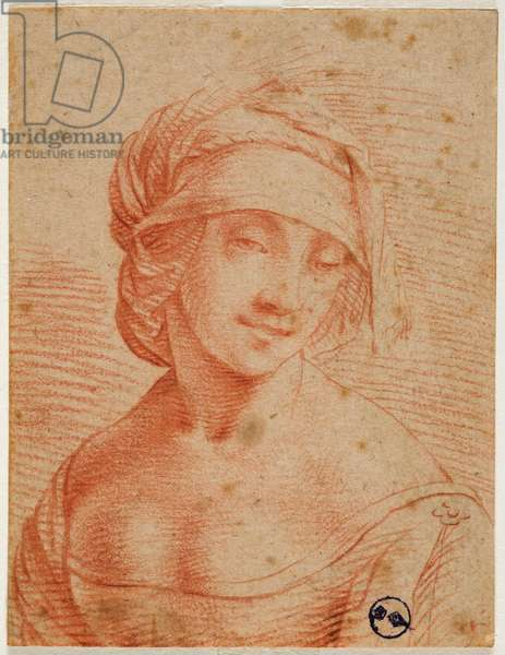 Bust of a young woman with a cap, first half of the 16th century (blood on paper)