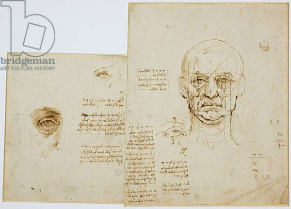 Studies of proportions of face and eye (with notes), c. 1489-90 (metallic tip, pen and brown ink on paper)