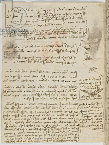 Birds Flight Code, c. 1505-06, paper manuscript, cc. 18, sheet 10 verso