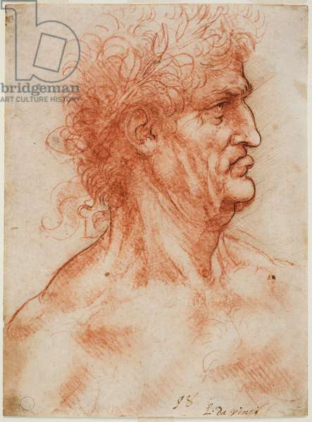 Virile head of profile crowned with laurel, c. 1506-10 (blood with contours recrossed in pen on white paper)