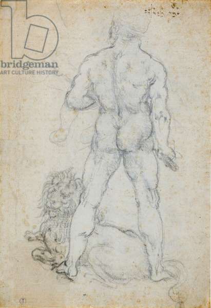 Hercules and the Nemean lion, c. 1506-08 (charcoal and metal tip on white paper)