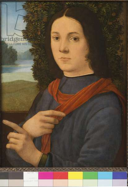 Portrait of a young man, 1490-99 (tempera on board)