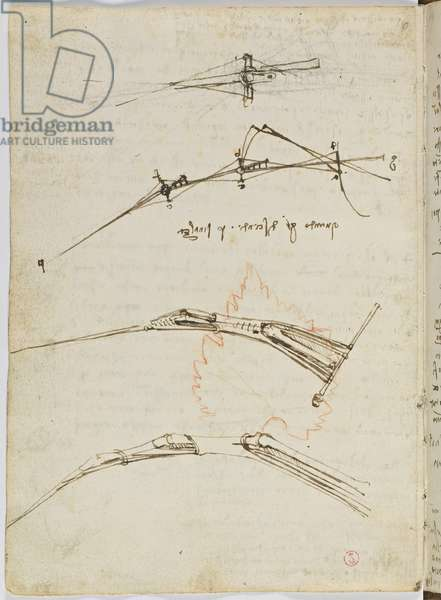 Birds Flight Code, c. 1505-06, paper manuscript, cc. 18, sheet 11 verso