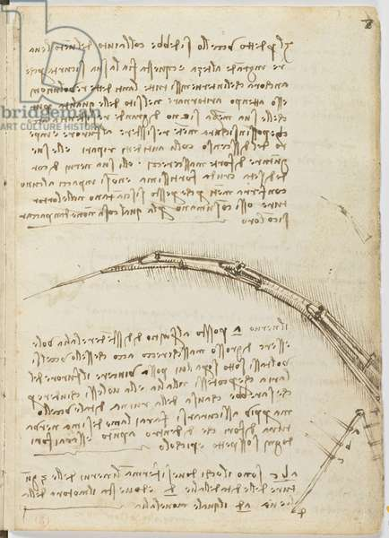 Birds Flight Code, c. 1505-06, paper manuscript, cc. 18, sheet 7 recto