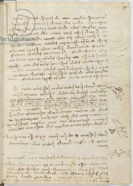 Birds Flight Code, c. 1505-06, paper manuscript, cc. 18, sheet 12 recto