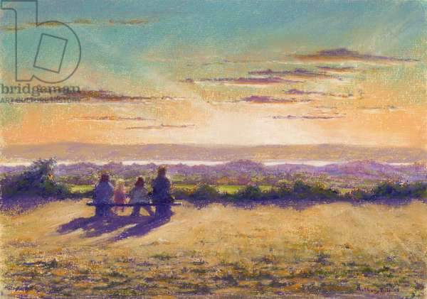 Remains of the Day, 2003 (pastel on paper)