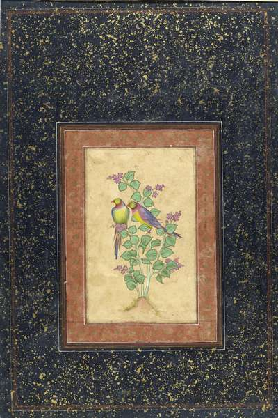 Two colourful birds on a plant with flowers, Delhi, c.1800-20 (bodycolour on card) (verso of 447422)