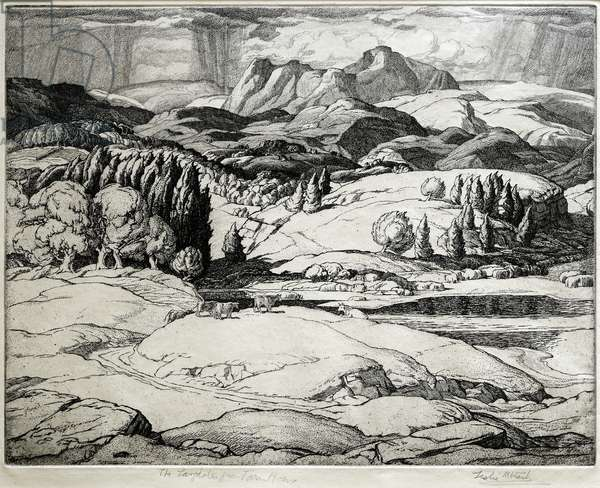 The Langdales from Tarn How (etching)