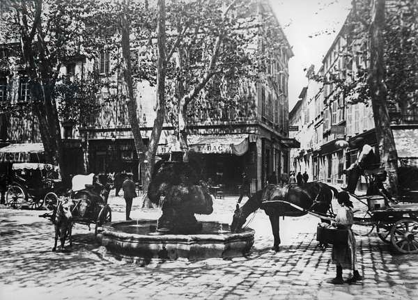 The Cours Mirabeau, Aix-en-Provence (b&w photo)