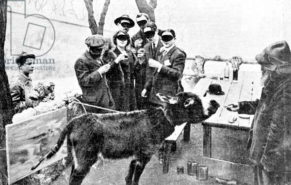 The donkey of Lapin Agile paints a picture for the Salon des Independents (b/w photo)