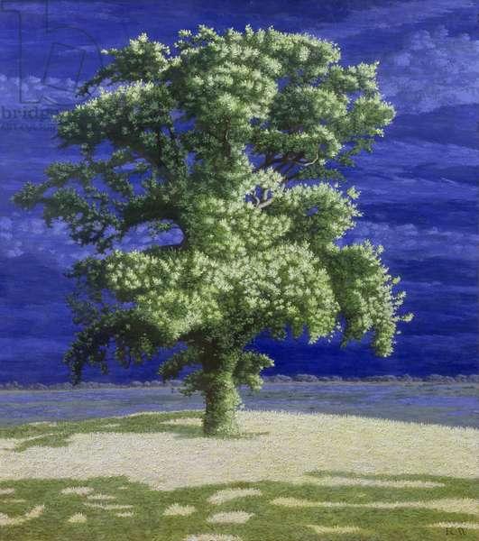 Oak Tree, 2004 (oil on board)