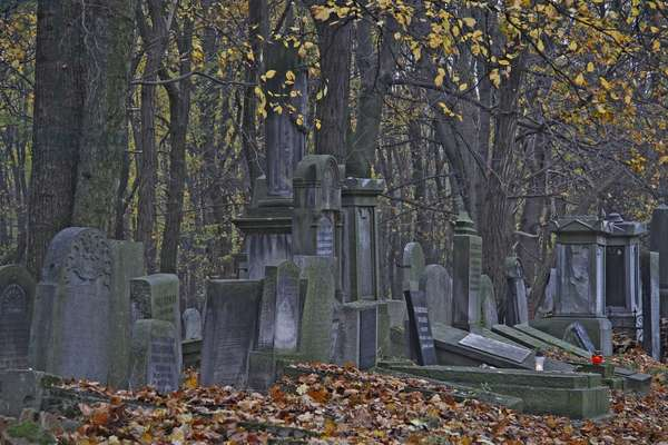 Jewish Cemetery, Warsaw, Poland (photo)