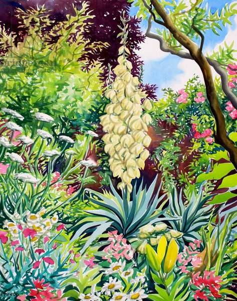 Garden with Flowering Yucca (watercolour on paper)