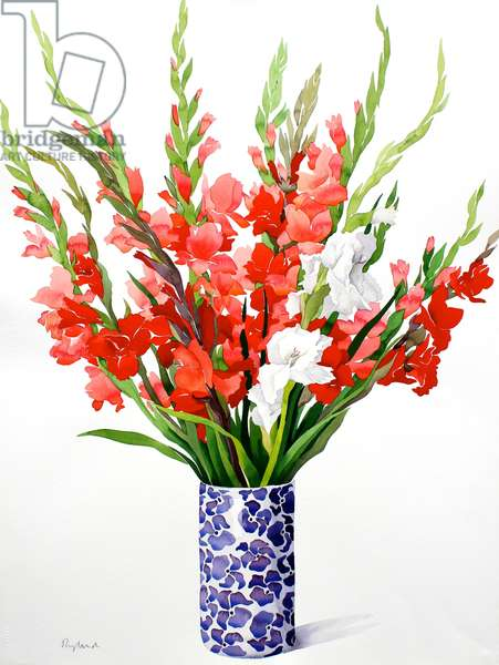 Red and White Gladioli (watercolour on paper)