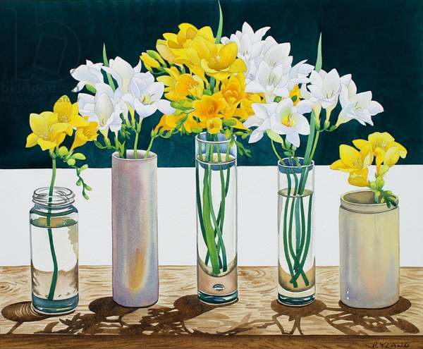 Still Life Freesias (watercolour on paper)