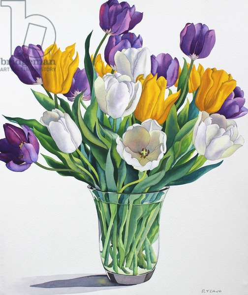Tulips in Glass Vase (watercolour on paper)