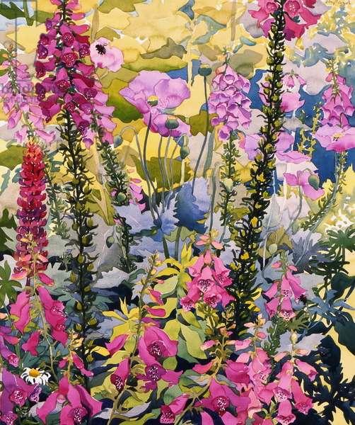 Garden with Foxgloves (w/c on paper)