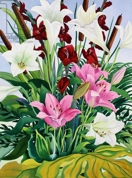 Lilies and Bullrushes (watercolour on paper)