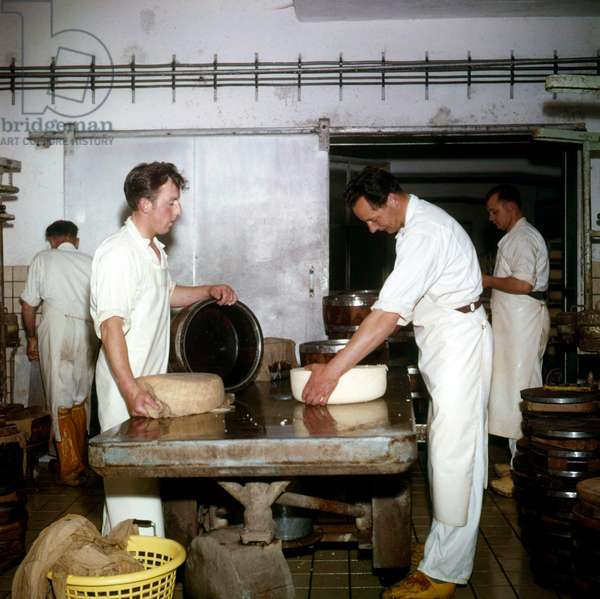 Dairy companies, cheese making: two men put cheese in a mould, the thirth removes the mangle cloth, The Netherlands