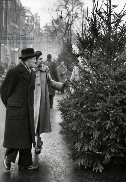 Christmas, The Netherlands, 1950