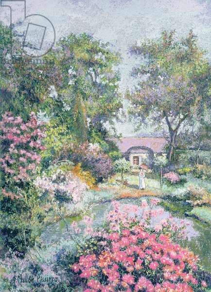 Early September, Asters in Full Bloom at the Moulin du Pont Gral (pastel)