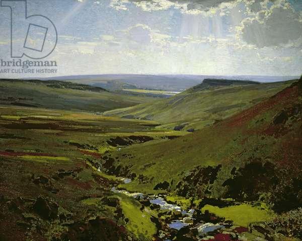 Burbage Brook (oil on canvas)