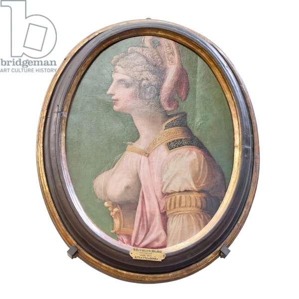 Ideal head, 1560-70 circa, (painting)