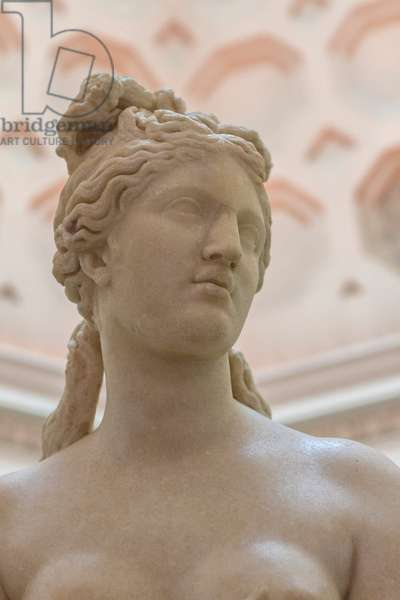 Statue of the Capitoline Venus, detail (marble)