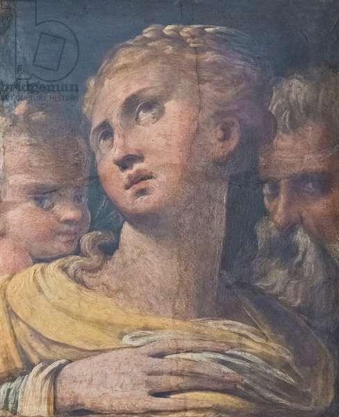 Three heads, 1529-31 circa, (detached fresco transfered on masonite)