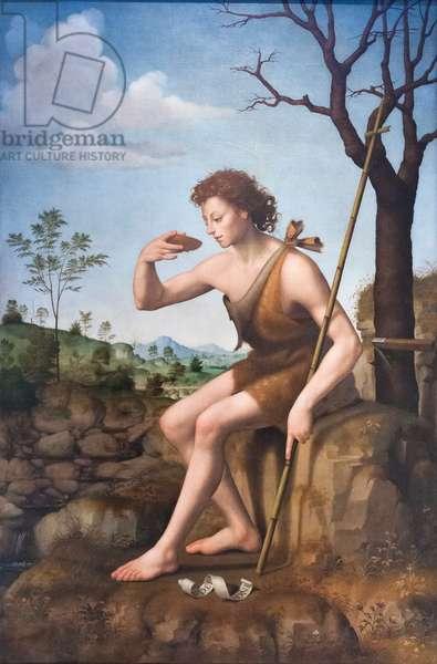 Saint John the Baptist, 1523-1525 circa (painting)