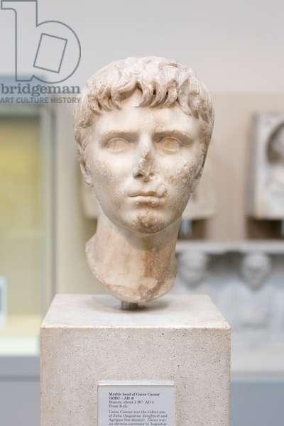 Head of Gaius Caesar, about 2 BC- 4 AD
