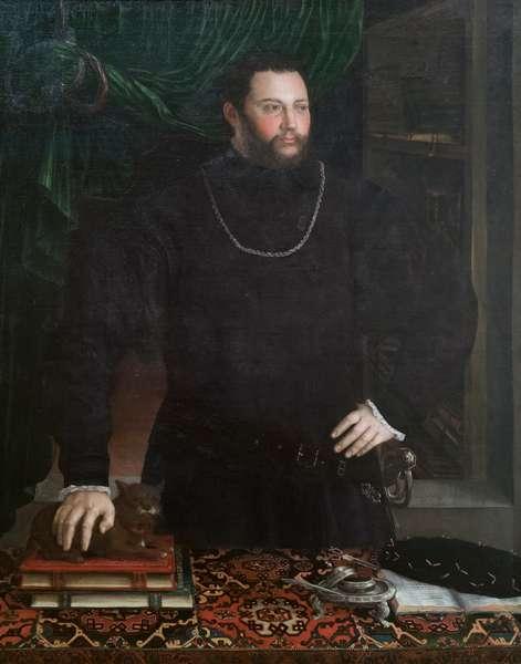 Portrait of a gentleman, 16th century (oil on canvas)