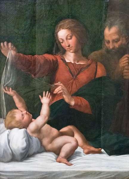 Holy family, also known as Madonna del popolo, Madonna di Loreto or Madonna del velo, 1512 circa, Raffaello Sanzio and workshop (oil on panel)