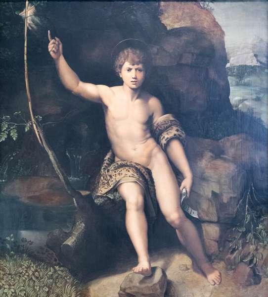 St John the Baptist, 1520-1530, (oil on panel)