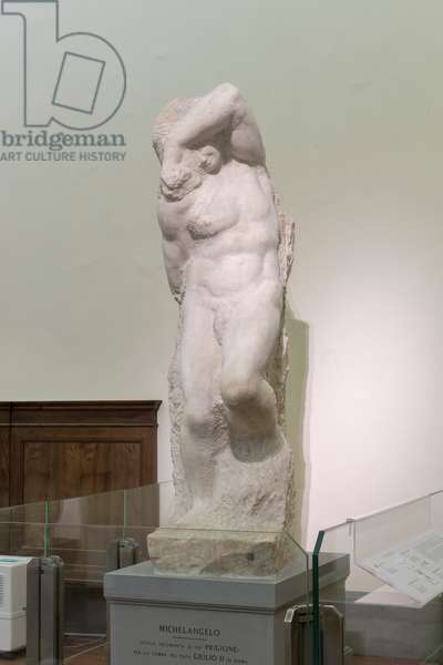 Prisoner, called young slave, 1525-1530 (marble)
