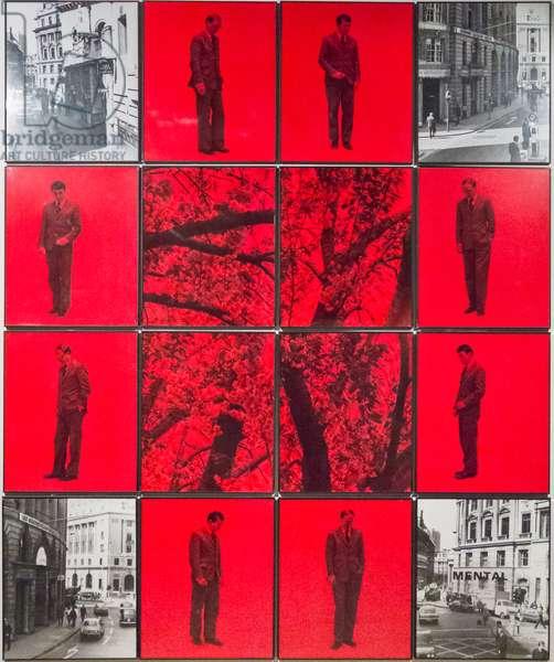 Mental 6, 1976, 16 hand coloured gelatin silver prints in artist frames