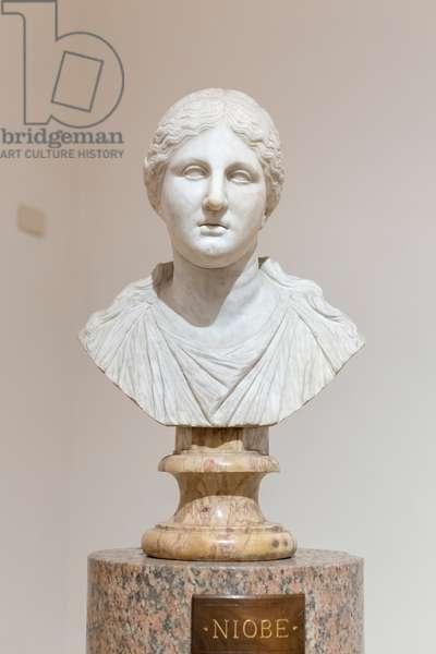 Aphrodite or Niobe, Ludovisi collection, National Roman Museum, Palazzo Altemps, Rome, Italy